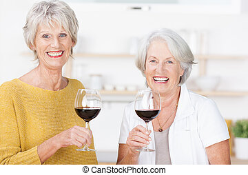 Two senior friends enjoying a glass of red wine - Two...