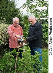 two senior gardeners