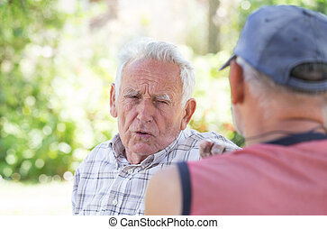 Two senior men talking in park