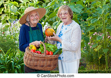 Two Senior Women at the Farm with Fresh Vegetables