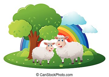 Two sheeps on the farm