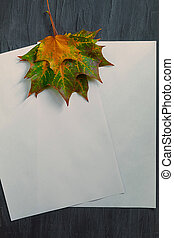 Two sheets of rectangular white paper with maple leaves on a black background
