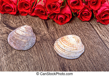 Two shells and roses on wooden background