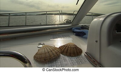 Two shells on a boat - A close up shot of two shells on a...