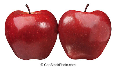two simetrical apple suitable for folders or brochures