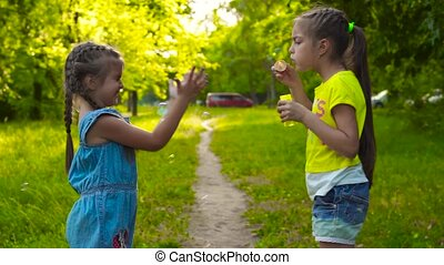 Two sisters little girls blowing soap bubbles in park - Two...