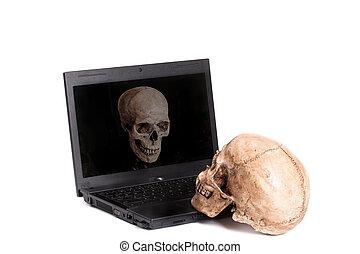 Two skulls on laptop