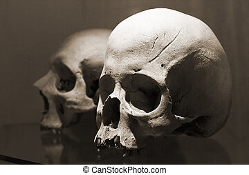 Two skulls - Skulls in Kutna Hora ossuary, Czech Republic....