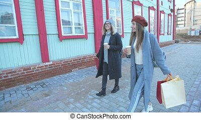 Two beautiful smiling women walking after good shopping. Consumerism, lifestyle concept