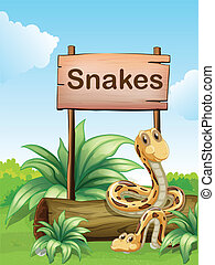 Illustration of the two snakes beside a wooden signboard