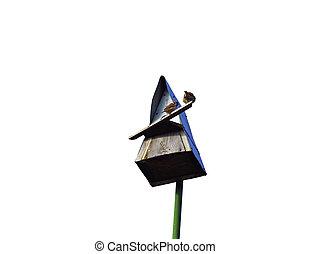 sparrows sitting on a triangular birdhouse