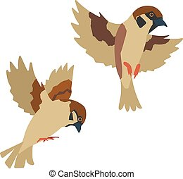 two sparrows which flies