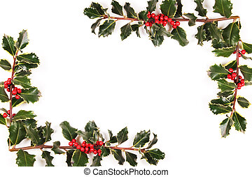 Two sprigs of holly on the white