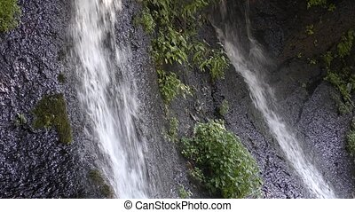 Two spring water falling from rock wall with green grass