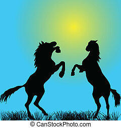 Two stallions silhouettes