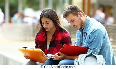 Two students memorizing notes in a park - Two studious...