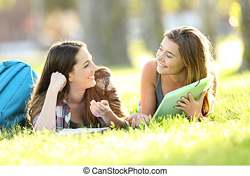 Two students talking on the grass