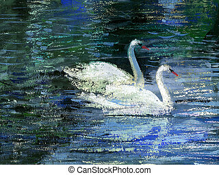 Two swans - Two white swans on lake