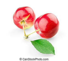 Two sweet apples with leaf