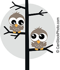 two sweet owls in a tree