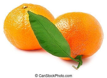 two tangerine isolated on a white background
