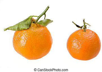 two tangerines isolated o