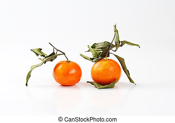 two tangerines with dry leaves