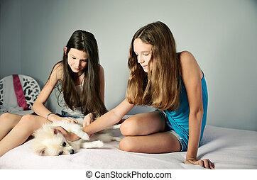 two teen girls stroking pomeranian. horizontal format