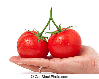 two tomato in hand isolated on white background