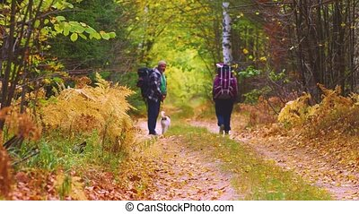 Two tourists walking on the pathway in the forest. Active healthy lifestyle