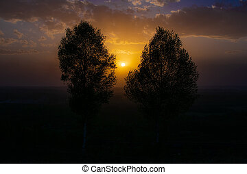 two trees between them the sun goes down