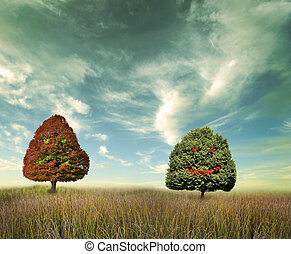 Trees On A Field
