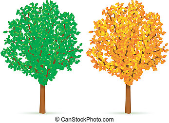 Two trees.