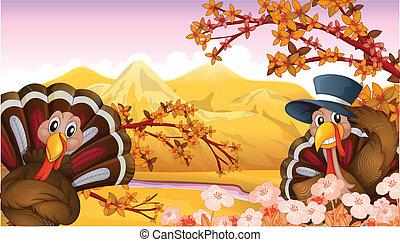 Two turkeys in an autumn view - Illustration of two turkeys...