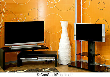 Two TVs - Two big LCD TV sets with DVD player