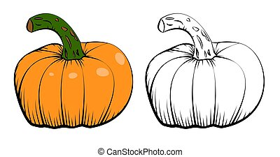 Two vector ink hand drawn icons of pumpkin