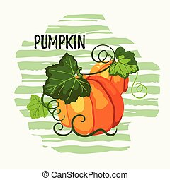 Two vector pumpkins on the striped background