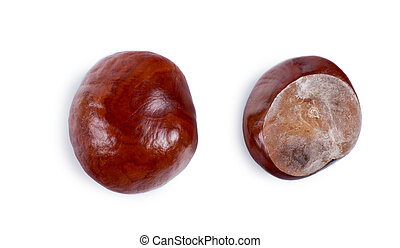 Two views of a fresh chestnut