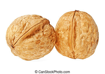 Two walnuts on a white background