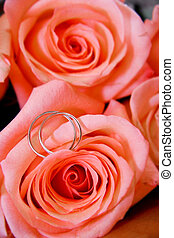two wedding rings in rose bouquet