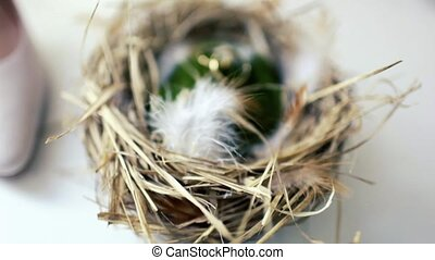 two wedding rings in the nest - two wedding rings in a nest...