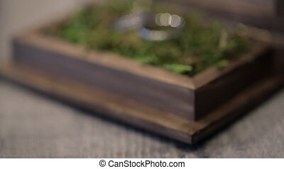 Two wedding rings lie in a wooden casket on green vegetation.