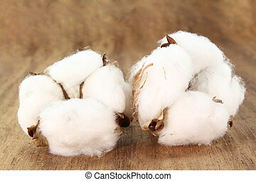 two white Cotton blossoms on a wood plate