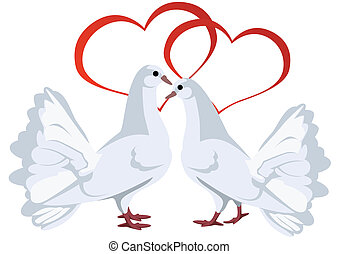 Two white doves and hearts