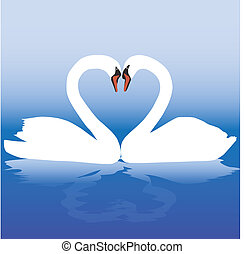 Two white swans with love.
