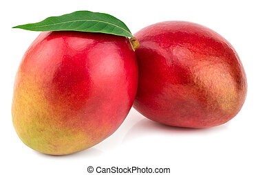 Two whole mangoes with green leaf isolated on white background Clipping Path.
