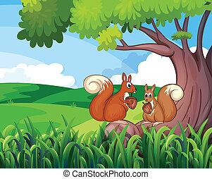 Two wild animals under the tree