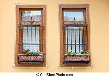 Two Windows with Bars