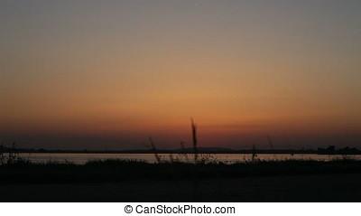 Two Women Dog Walking On Lake Shore Sunset Backlit Silhouette