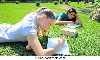 Two women studying in park